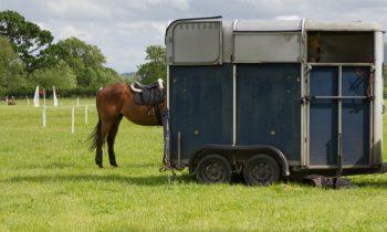 Horsebox Insurance Savings