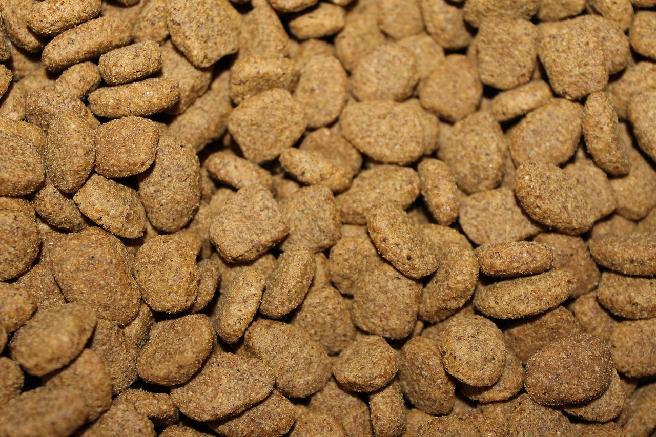 What The Future Holds For The Animal Feed Phosphates Market