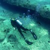 Tips for Choosing The Right Diving Holiday Insurance